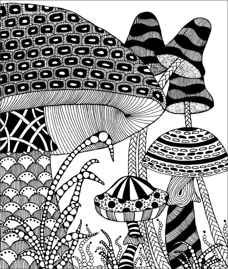 800x942 Mushroom Zentangle Tangled, Mushrooms And 50th