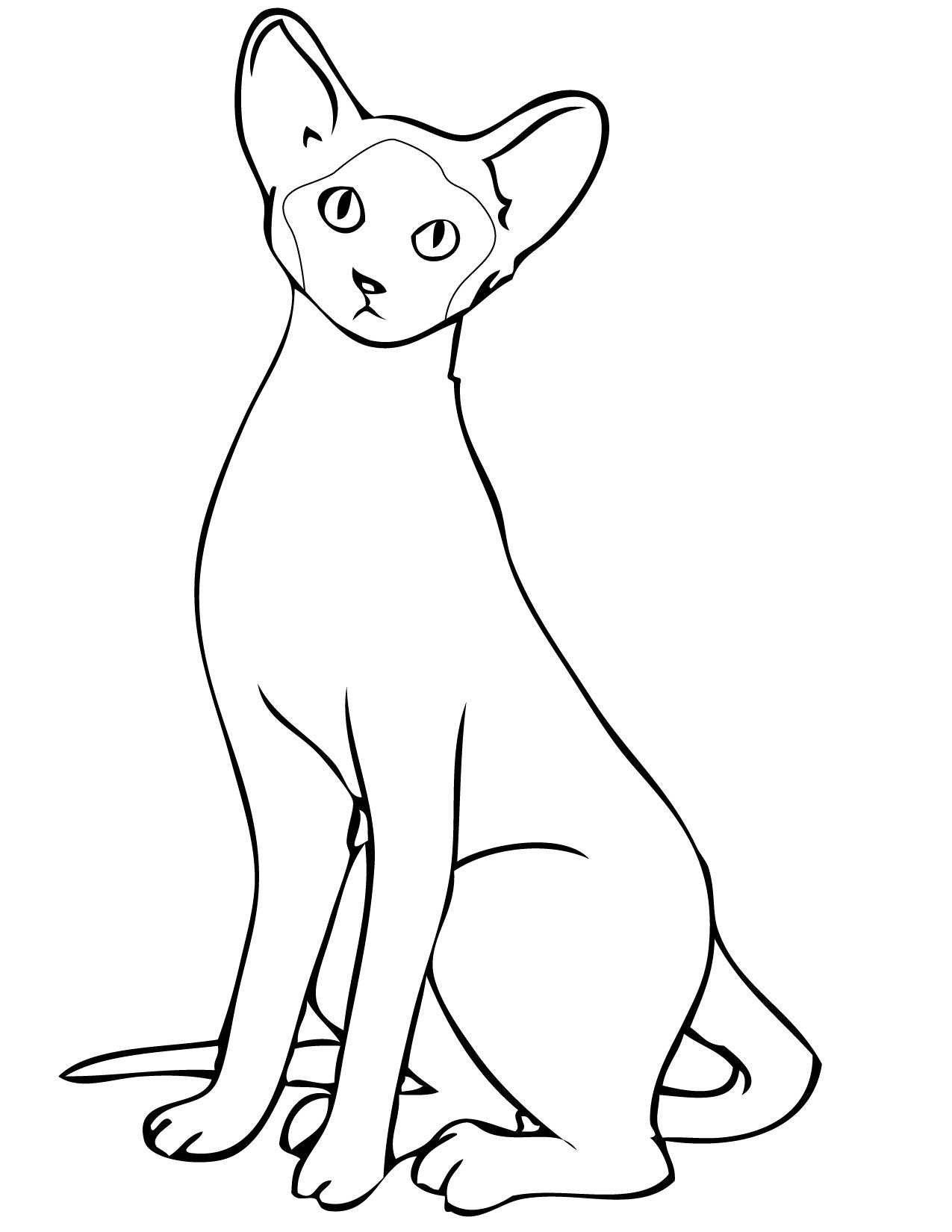 Siamese Cat Drawing at GetDrawings