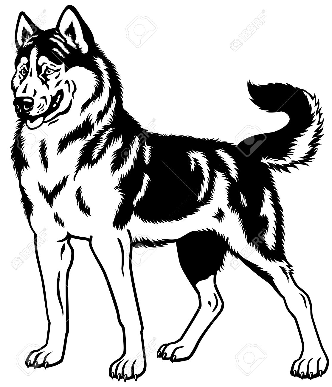 Dorable Cute Husky Para Colorear Bandera - Ideas Para Colorear ...