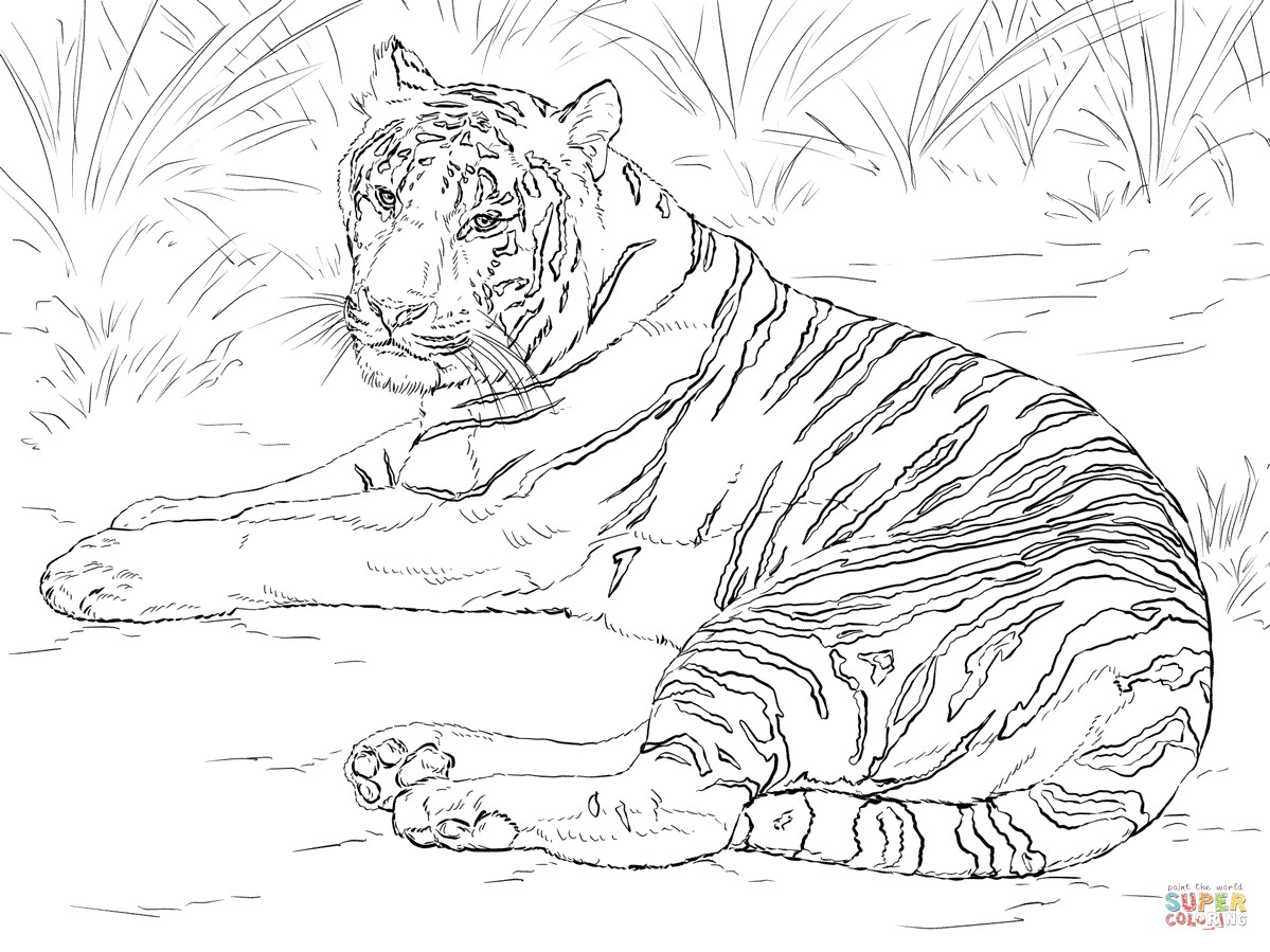 1199x899 Coloring Pages Printable Tiger Fresh Siberian Tiger Laying Down