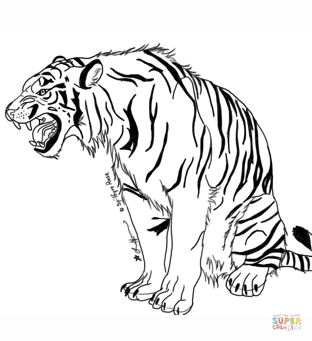 624x683 Snarling Tiger Coloring Page Free Printable Coloring Pages