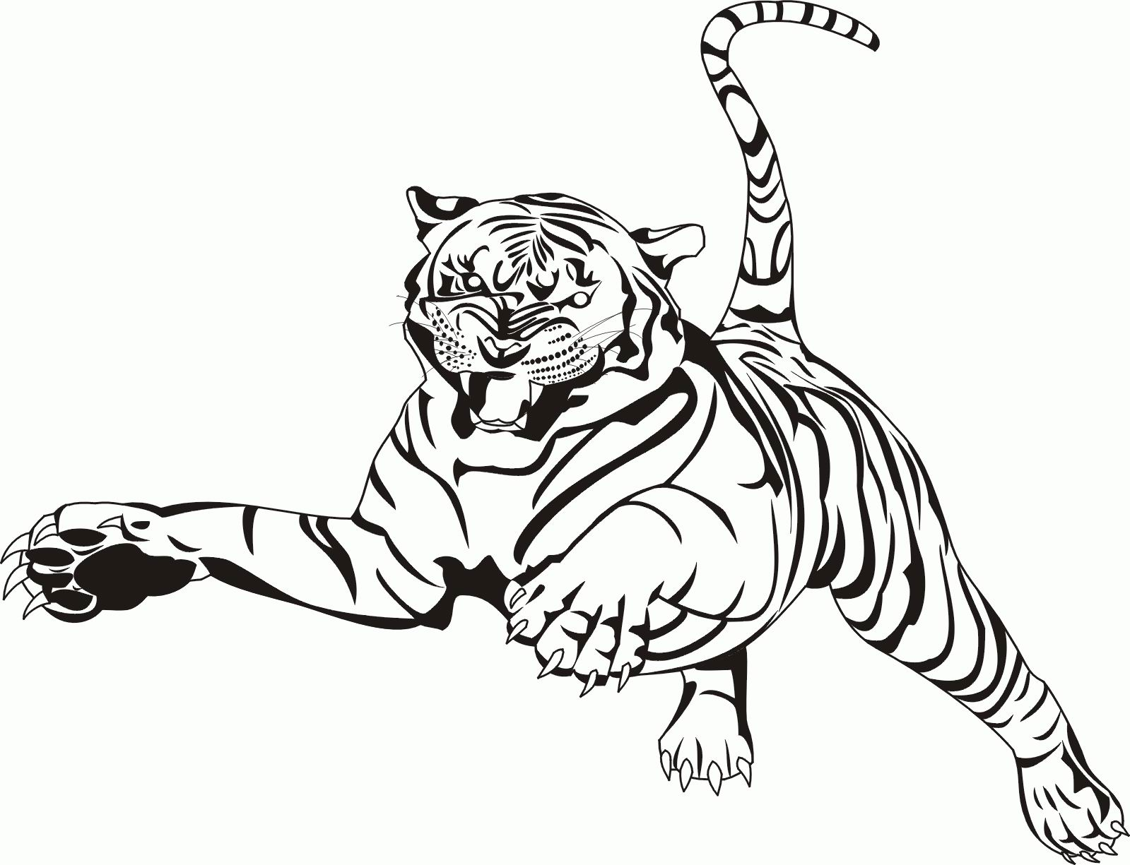 1599x1225 Tiger Coloring Pages