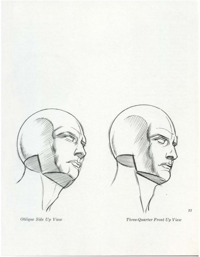 638x819 Burne Hogarth Drawing The Human Head