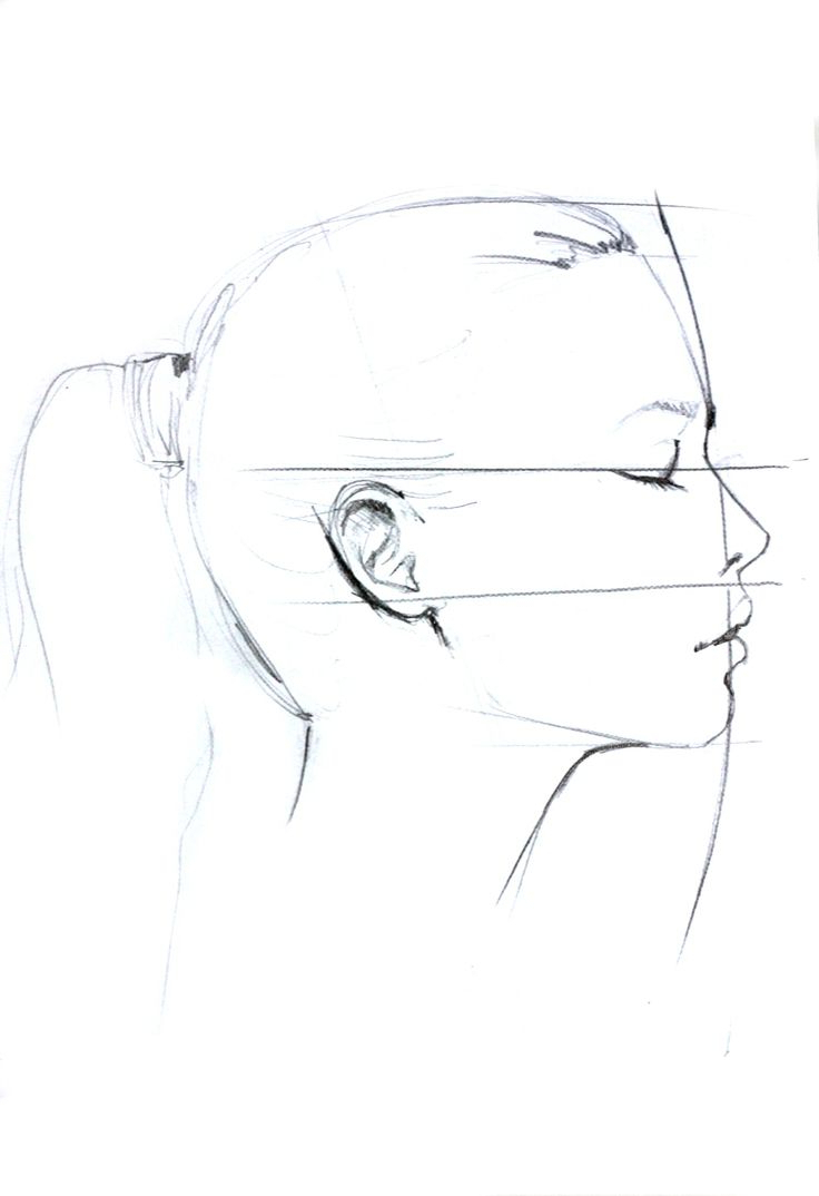 736x1074 Draw A Sides Pose Girl Face Draw A Sides Pose Girl Face