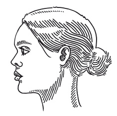 235x234 Generic Woman Portrait Side View Drawing Vector Art Illustration