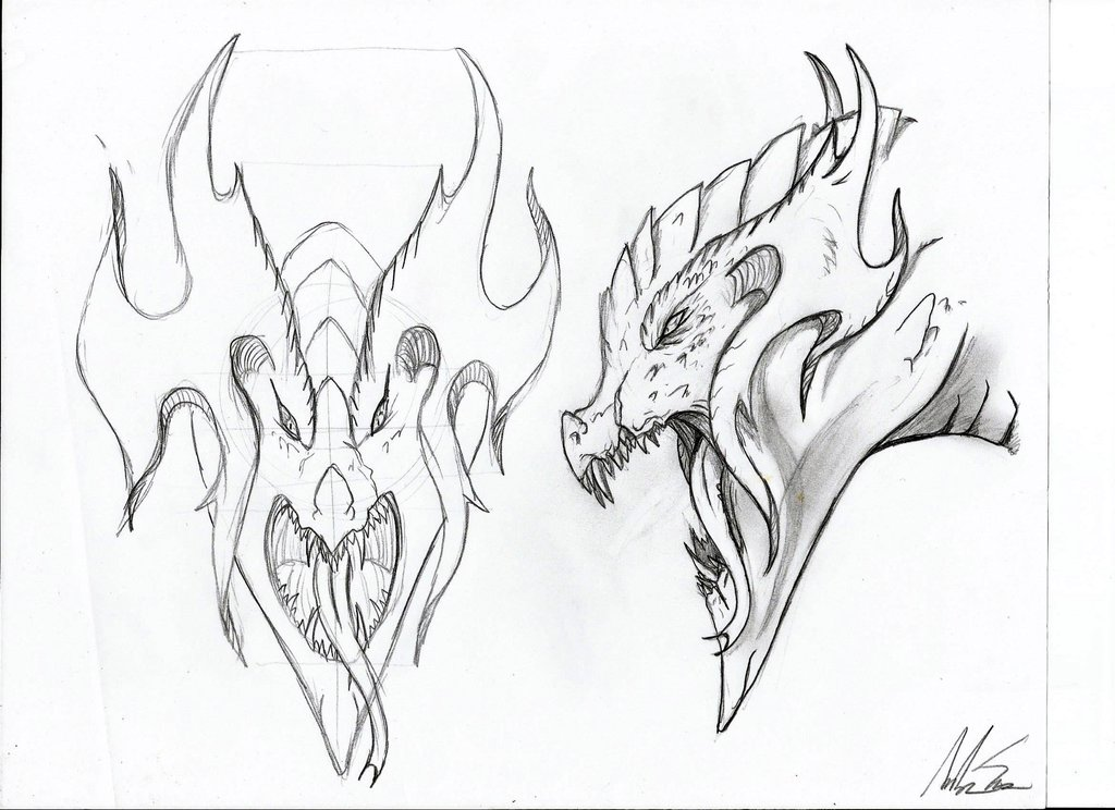 1024x744 Random Dragon Head ( Front And Side View) By Sauna2345