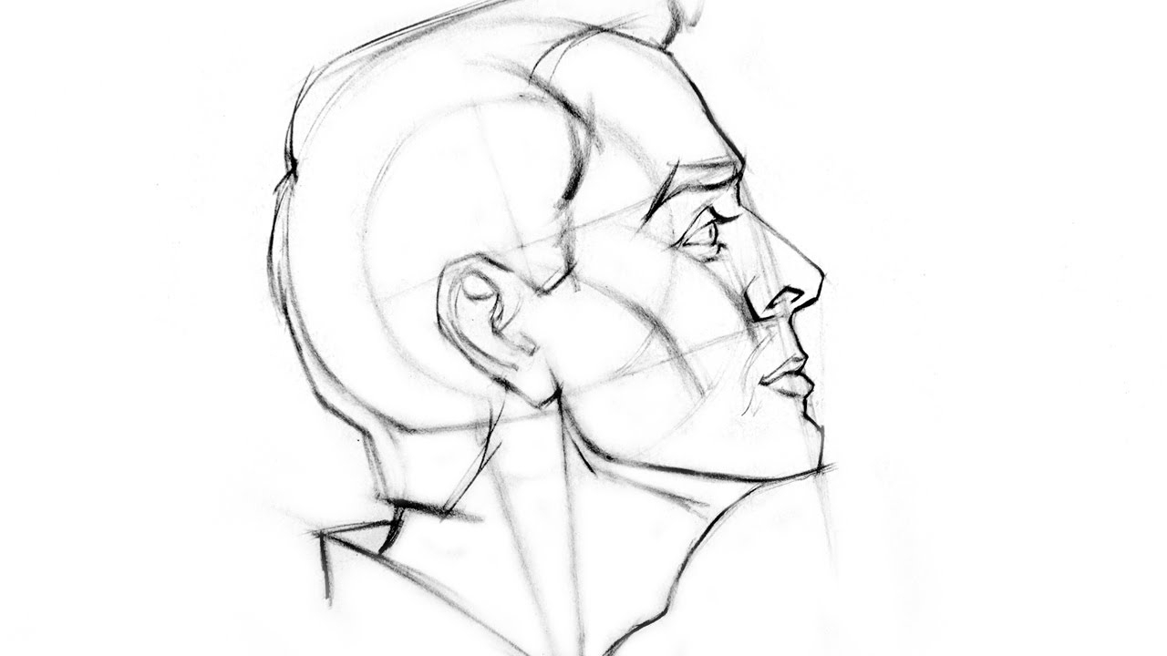 1280x720 Sketch Of Face Side View From Behind How To Draw The Head
