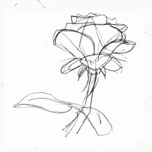 299x300 Trse How To Draw Tutorials Drawing Roses