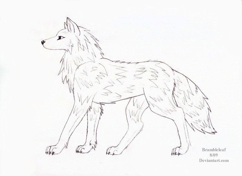 800x582 Wolf Side View By Brambleleaf