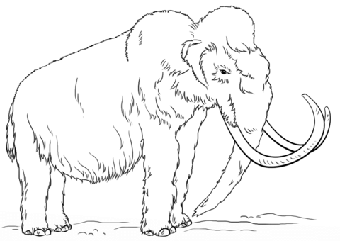 480x340 Woolly Mammoth Side View Coloring Page