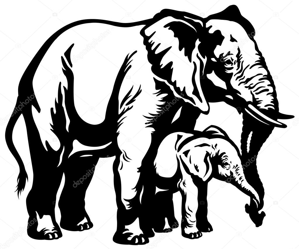 1024x854 African Elephant Mother With Baby Black White Stock Vector