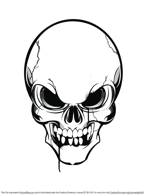 580x785 Pics Of A Skull Group