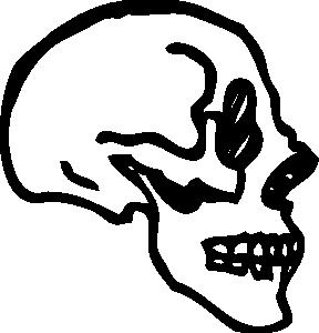 288x300 Skull Profile Clip Art