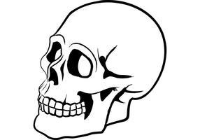 286x200 Skull Vectors (780 Free Skull Vectors)