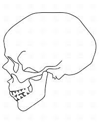 201x251 Concrete Skull Side View Skulls Skull Side View