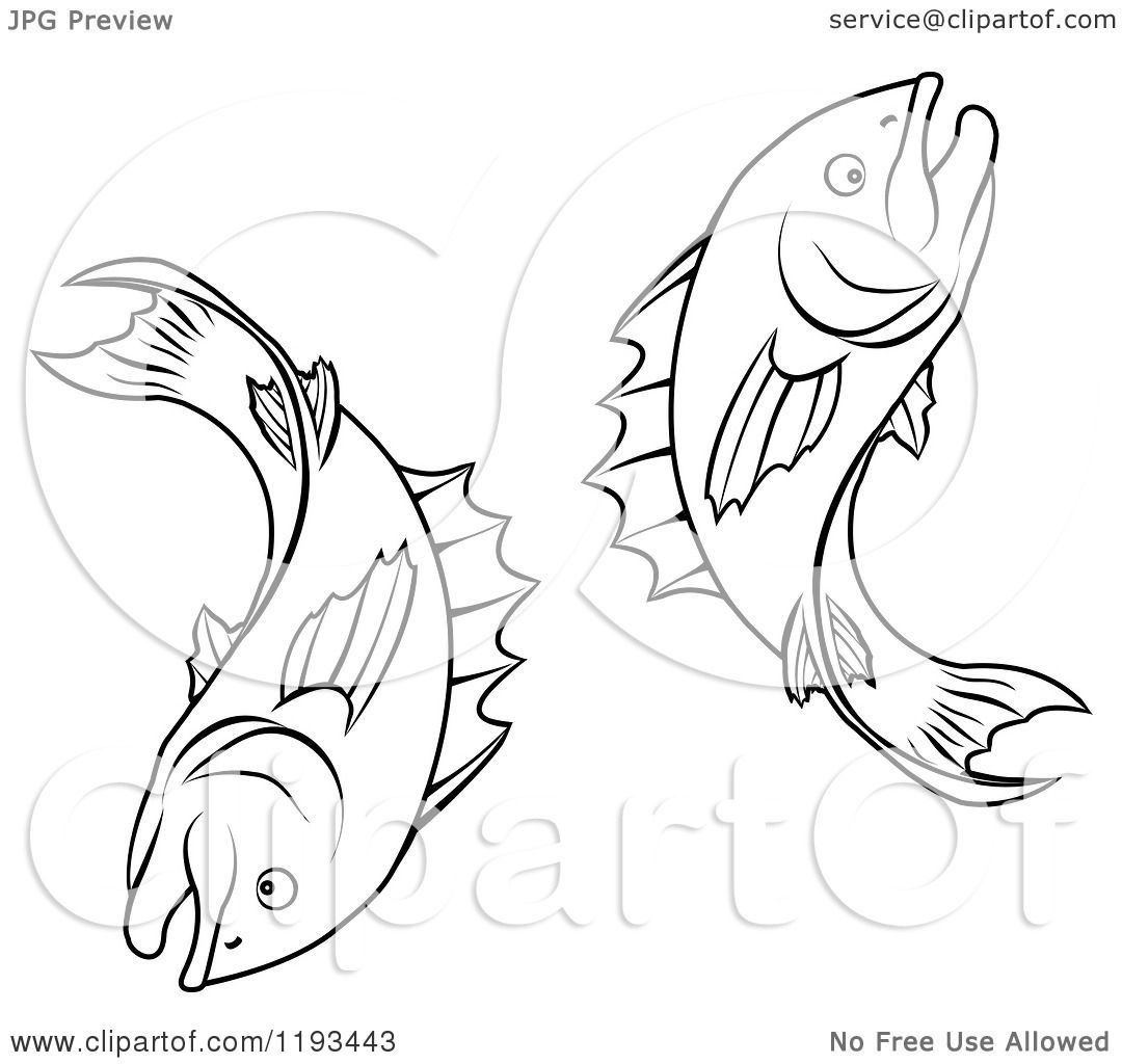 1080x1024 Clipart Of A Black And White Line Drawing Of The Pisces Fish