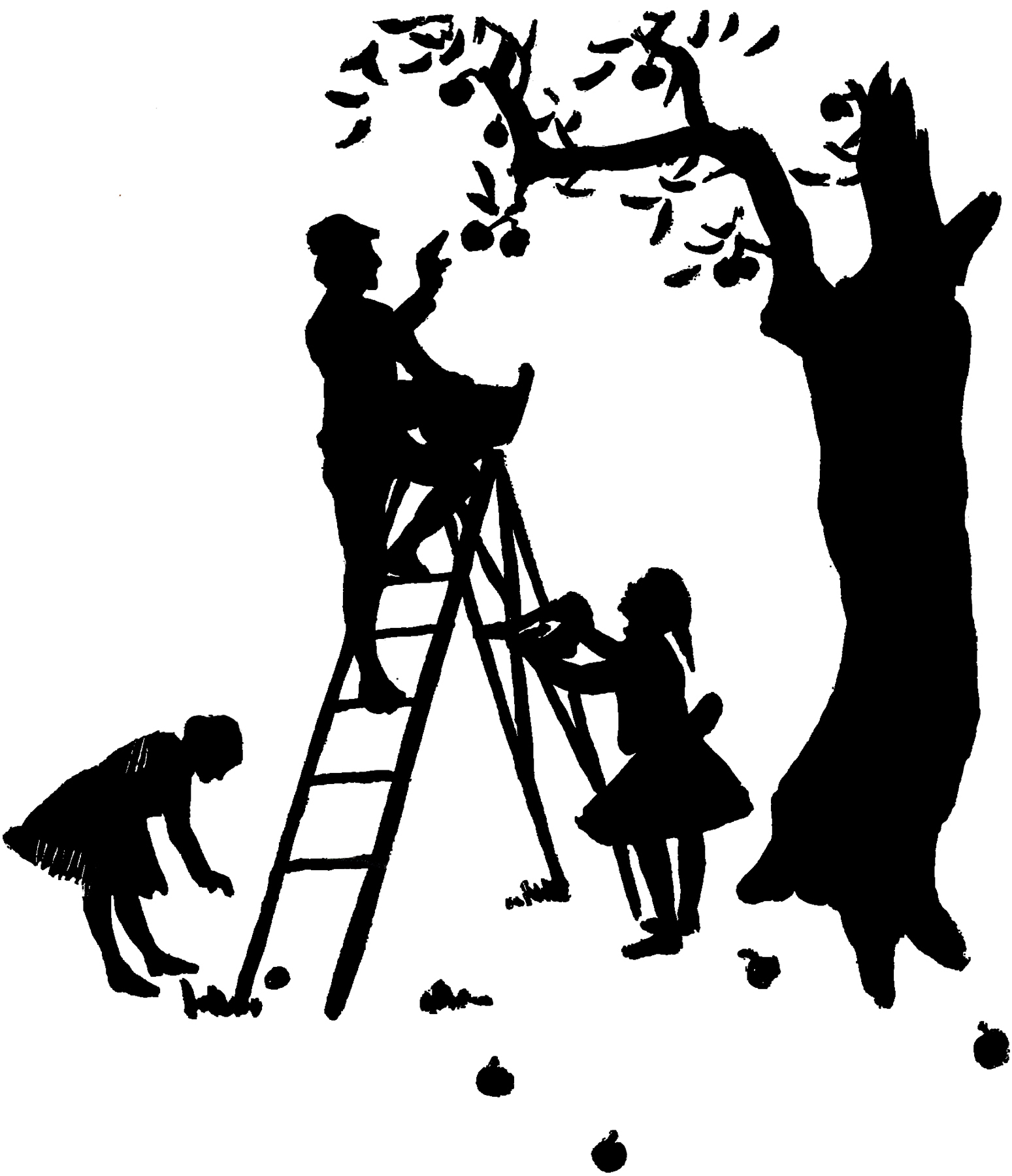1549x1800 Apple Picking Silhouette Image!
