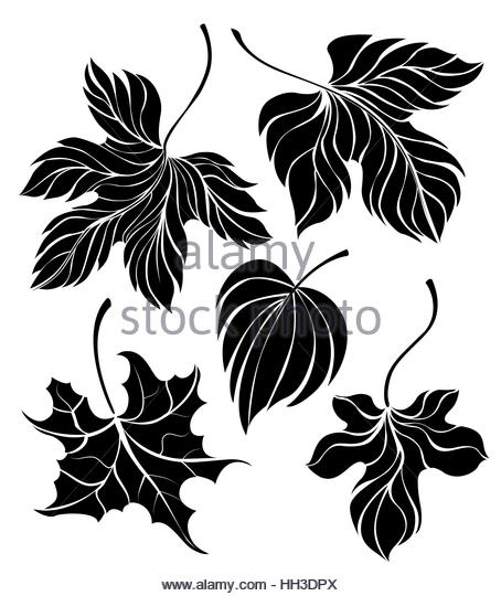 454x540 Set Hand Drawn Black Silhouettes Stock Photos Amp Set Hand Drawn