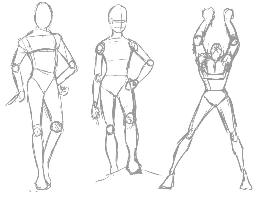 Simple Anatomy Drawing At Getdrawings Free For Personal Use
