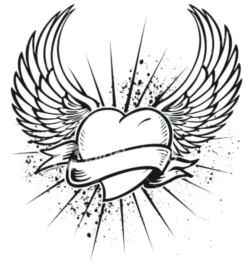 800x852 Angel Wings Pictures Color Angel Wings Digital Art Angel Wings By