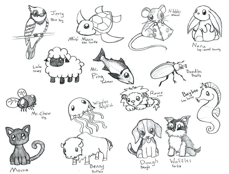 736x560 Coloring Pages Cute Animals Full Size Of Coloring Animal Pictures
