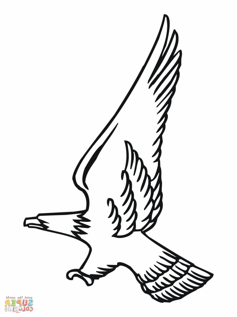 Simple Bald Eagle Drawing at GetDrawings.com | Free for personal use ...