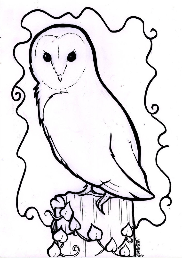 751x1063 Barn Owl Line Drawing Owl Crafts Owl, Drawing Owls
