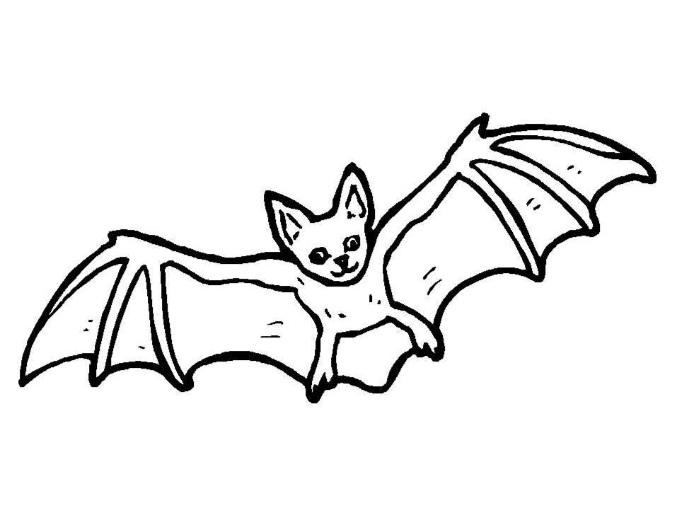 957x718 Halloween Activities Bat. Bat A Black Tribal Bat Tattoo Set. How