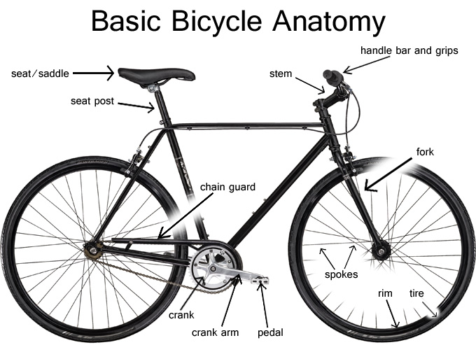 680x493 Syracuse Bicycle Get Up Close And Personal With Your Bike This