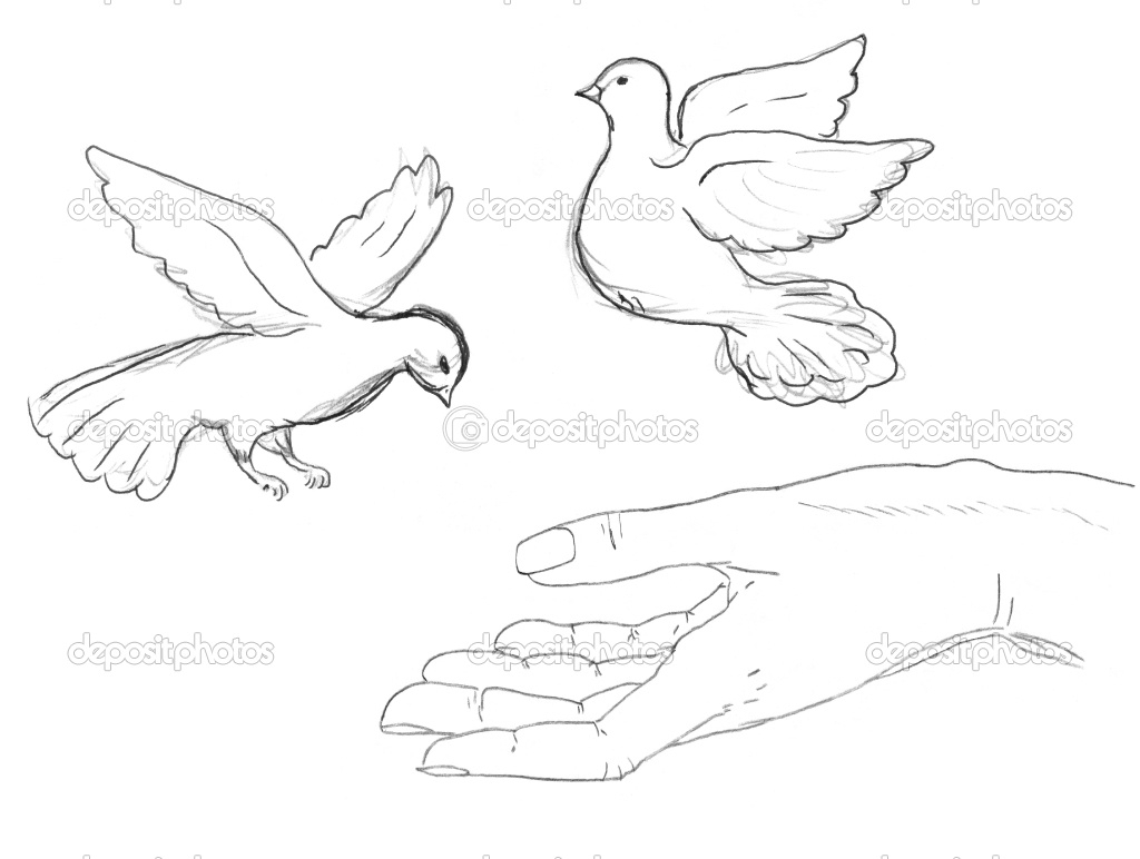 1024x772 Drawings Of Birds Flying How To Draw Flying Bird Tribal Tattoo