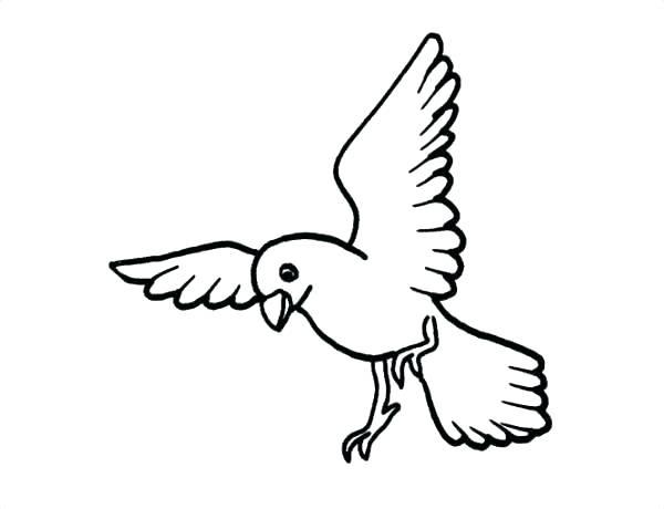 simple bird drawing flying at getdrawings com