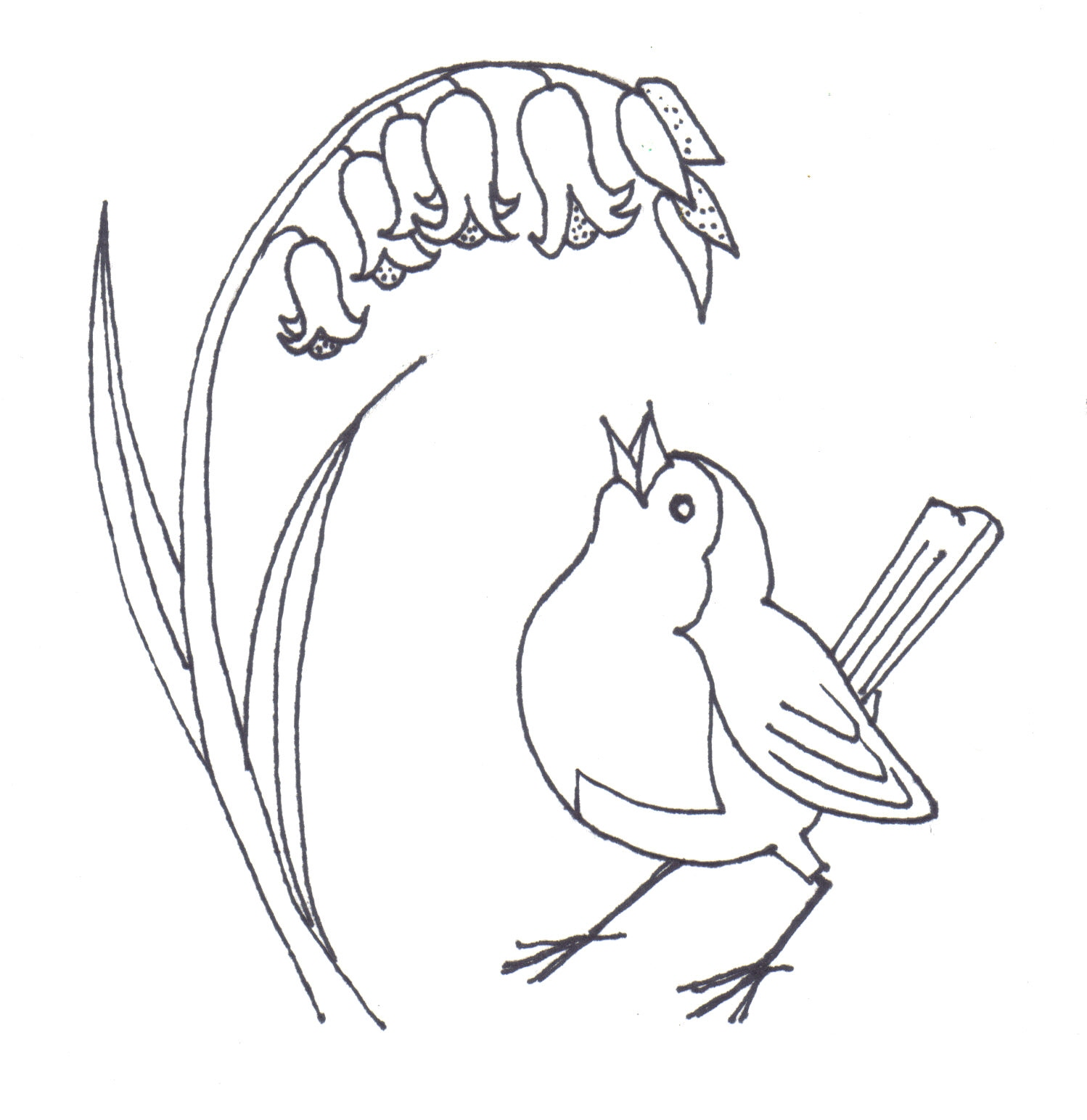 Simple Bird Line Drawing at GetDrawings | Free download