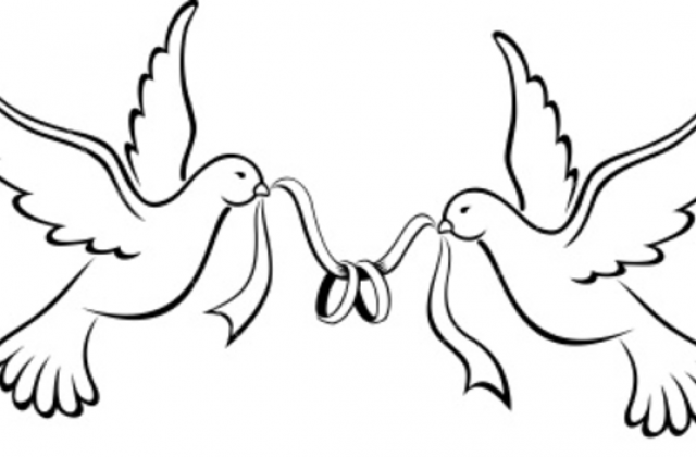Simple Bird Line Drawing At Getdrawings Com Free For