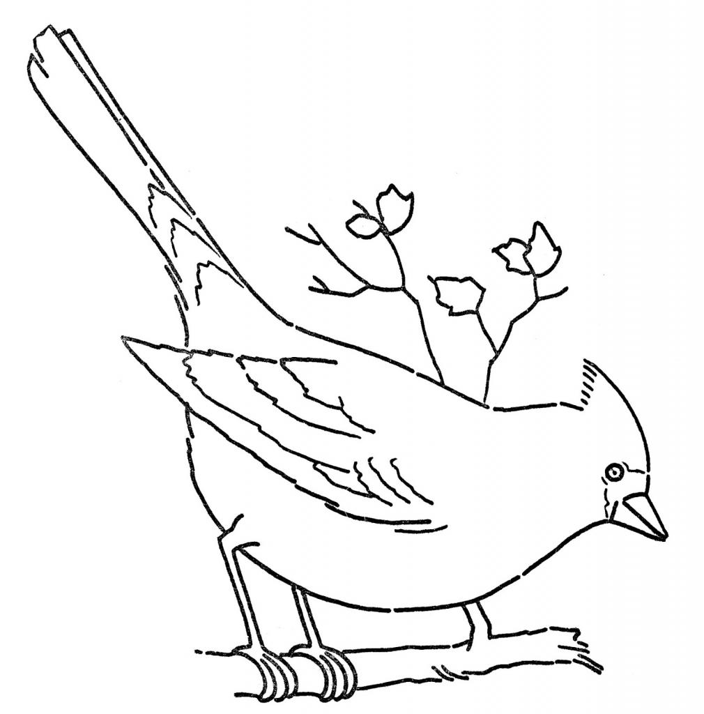 simple bird line drawing at getdrawings com