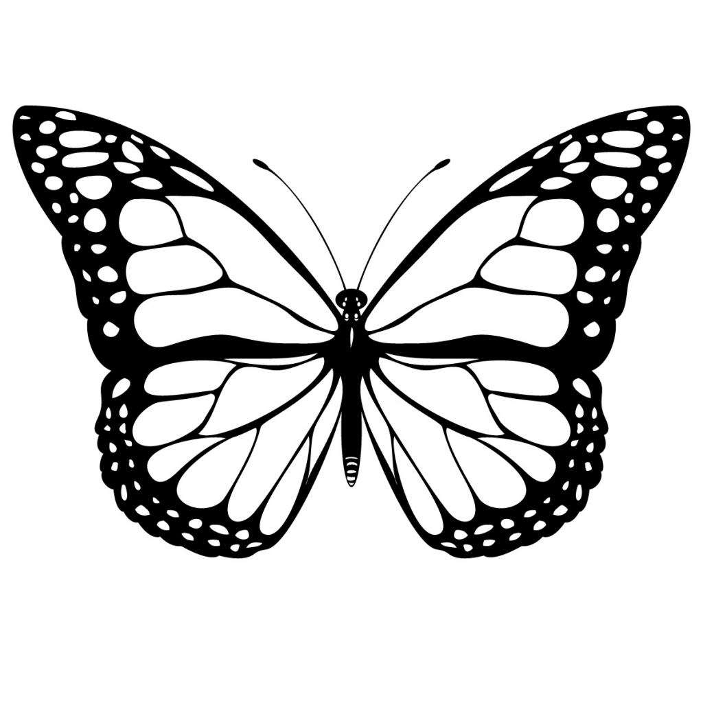 Simple Butterfly Drawing: Simple Butterfly Drawing At GetDrawings.com