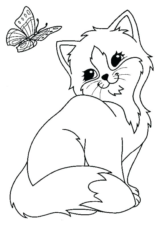 590x800 Simple Cat And Dog Coloring Pages Print Cats Dogs Sheets Kids
