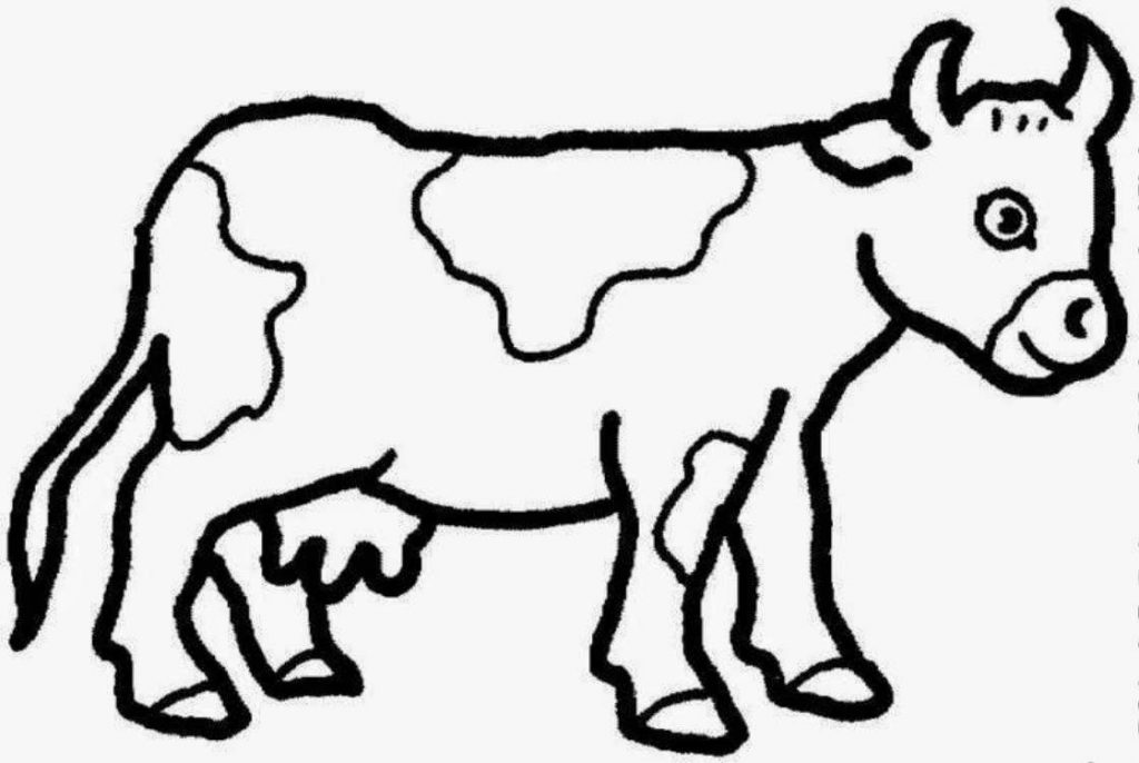1024x686 Adult ~ Cow Coloring Pages Simple Cow Picture Of A Cow Coloring