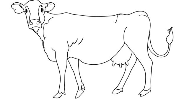Simple Cow Drawing at GetDrawings | Free download