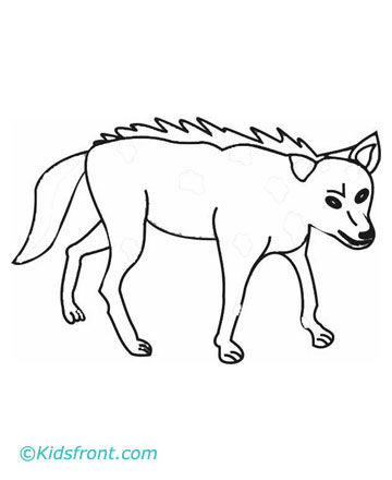 360x440 Coyote Coloring Pages Printable