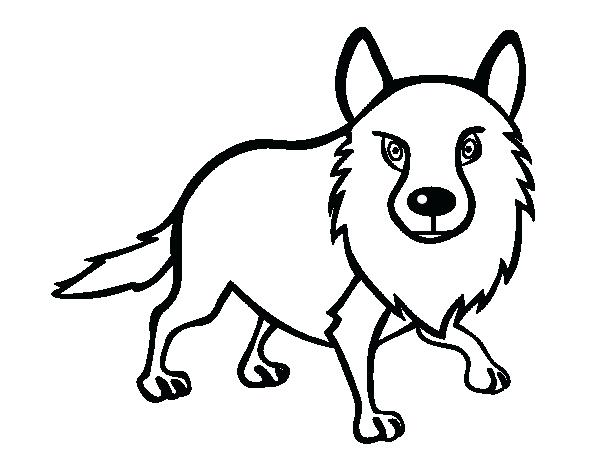 600x470 Top Coyote Coloring Page Image Wile E Pages Printable Desert Full
