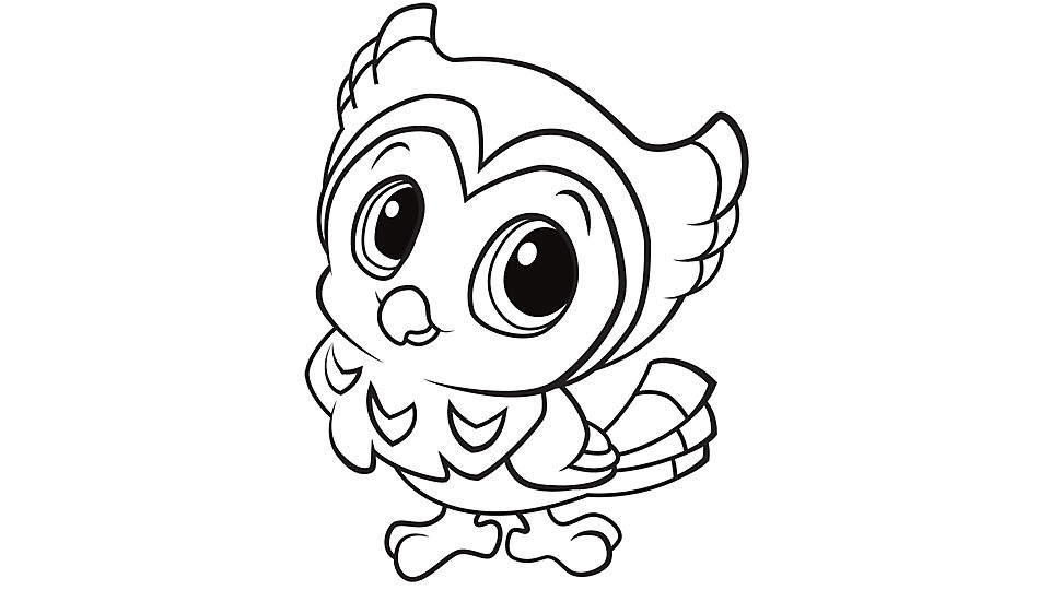 960x540 Cute Owl Coloring Pages