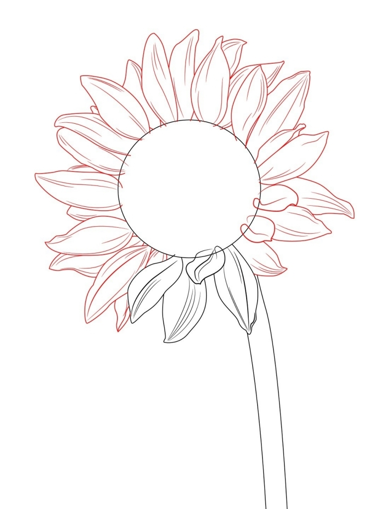 768x1024 How To Draw A Simple Flower How To Draw A Sunflower Draw Central