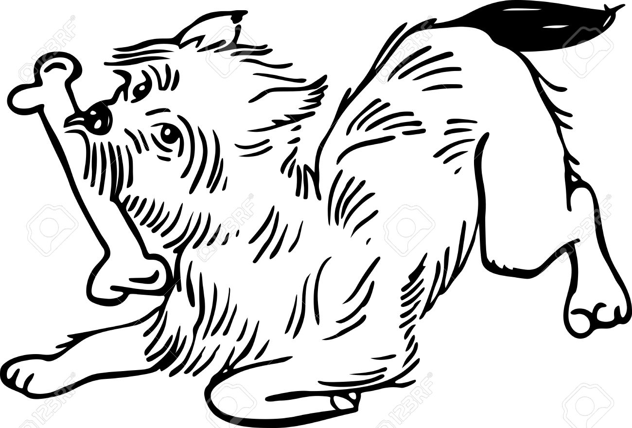 1300x880 Simple Blacknd White Line Drawing Of Fluffy Dog Chewing