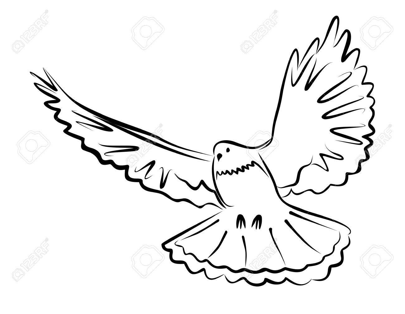 simple dove drawing at getdrawings com