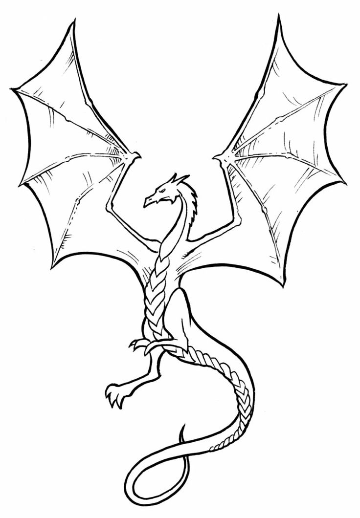736x1060 simple dragon drawing