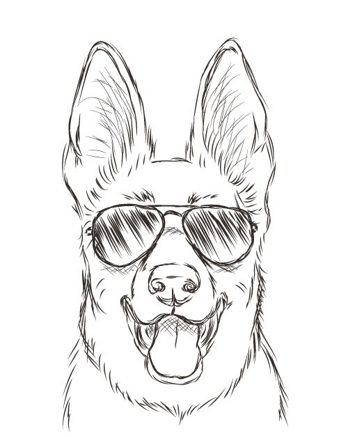 500x629 Drawing How To Draw A Simple Dog Face Together With How To Draw