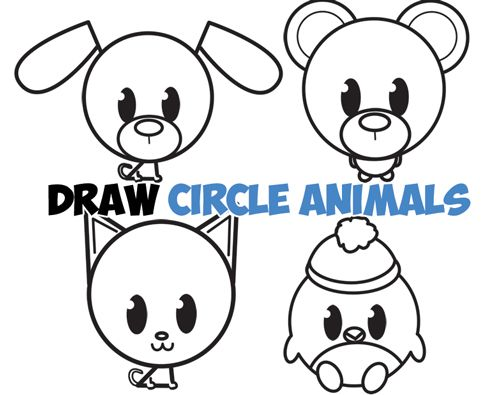 500x395 Learn How To Draw Cute Circle Animals With Simple Steps Drawing