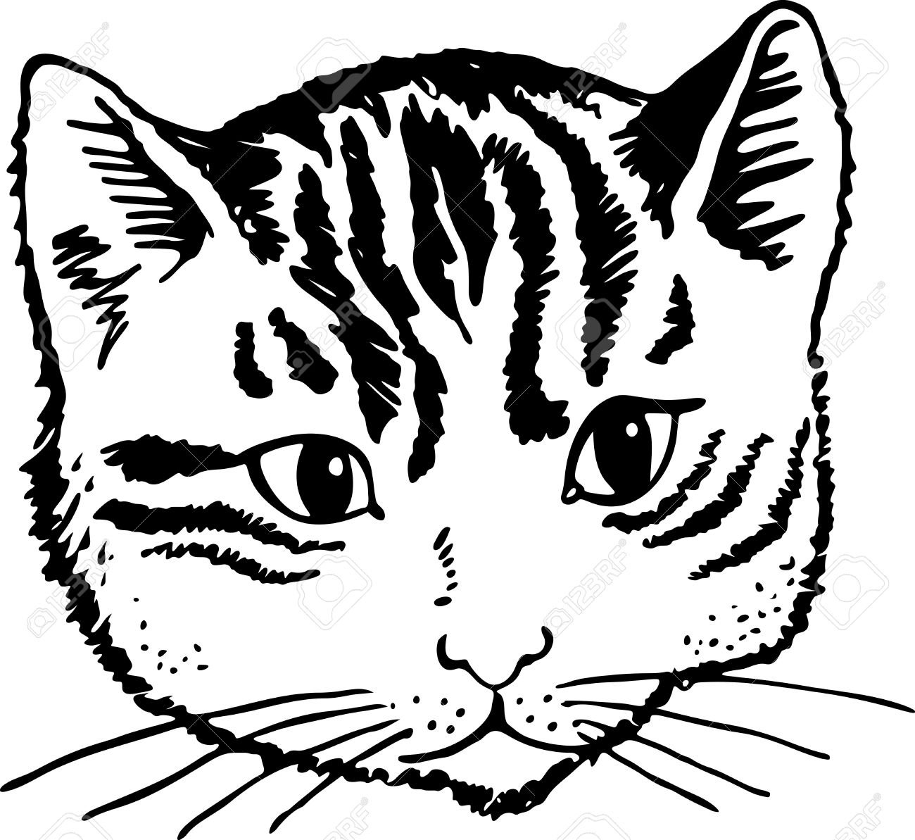 1300x1193 Simple Black And White Illustration Of A Cats Cute Face Stock