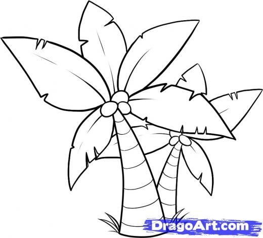 Simple Drawing Of A Palm Tree