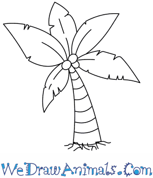 simple drawing of a palm tree at getdrawings com free for personal